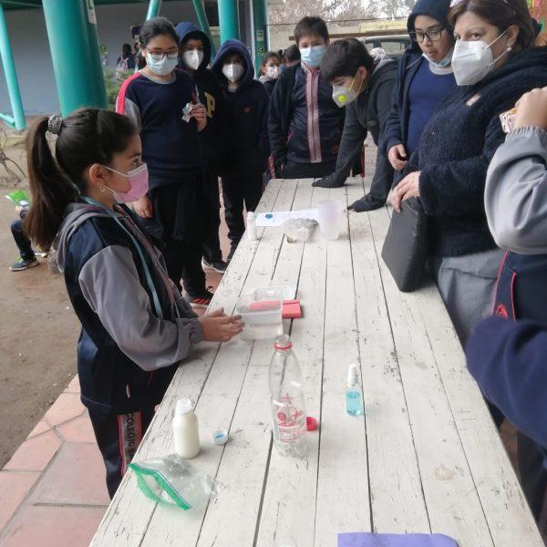 Mi Colegio en pandemia